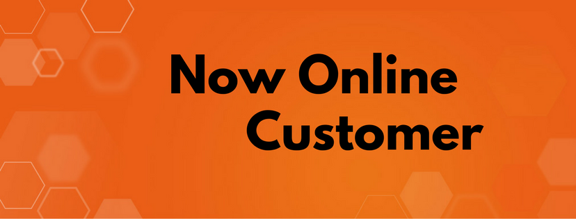 How to Check Now Online Customer Information in Magento 2