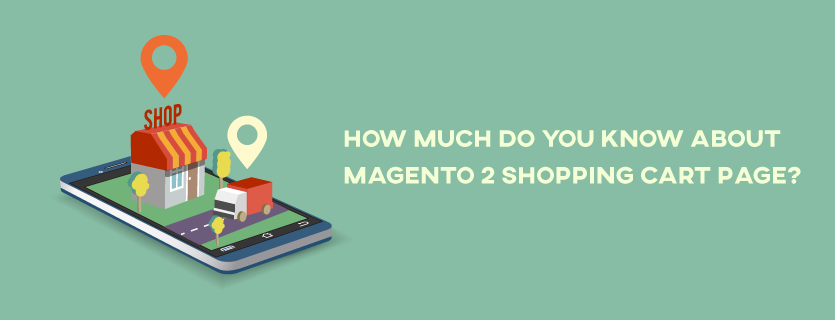 How Much Do You Know about Magento 2 Shopping Cart Page?