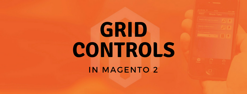 A Quick Introduction of Grid Controls in Magento 2