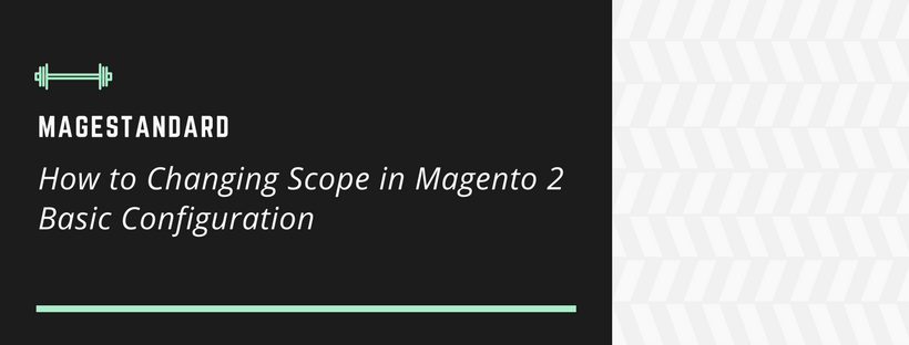How to Changing Scope in Magento 2 Basic Configuration