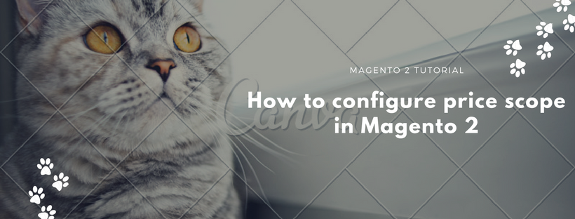 How to Configure Price Scope in Magento 2