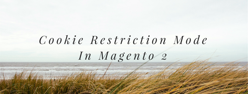 Full Guidelines On Cookie Restriction Mode In Magento 2