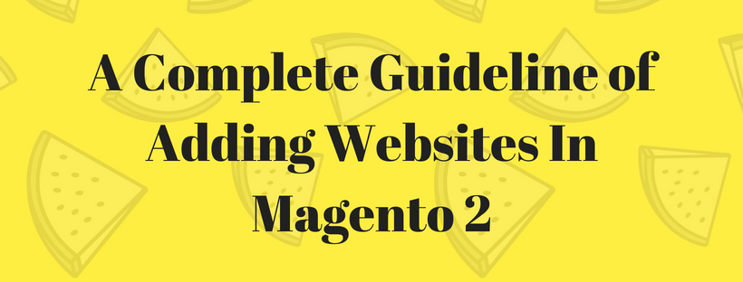A Complete Guideline of Adding Websites In Magento 2