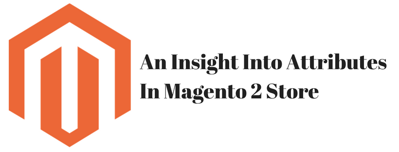 An Insight Into Attributes In Magento 2 Store